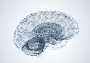 一个人又学占卜又学心理学是一种什么样的体验(心理的11种现象)