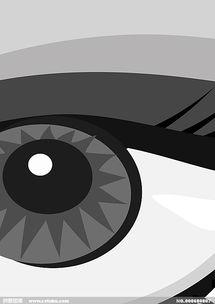 眼睛 cdr矢量素材