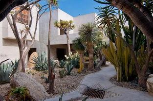 The Oasis 最破的水泥房子 也是最有禅意的地方