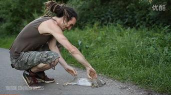 路边撞死一只兔子,老外捡起兔子,下一秒令路人惊