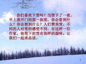 北师大版下雪的早晨教学语录