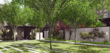 天啊上高新城区还藏着一座几十亩的世外桃源附高清组图