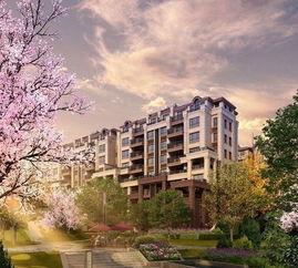 购买房屋后,小区绿化面积缩小怎么办?