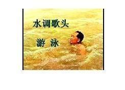 水调歌头游泳诗词(水调歌头  游泳)