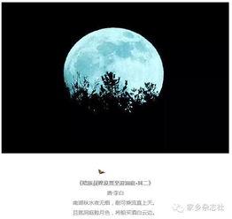 关于和月亮有关的诗词