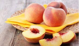 夏天有什么水果(夏天有什么水果结果)