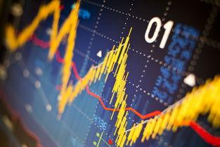 6字头股票和3字头股票有什么区别?