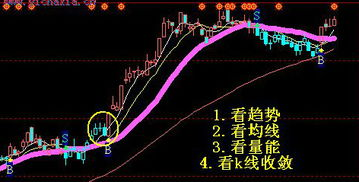 从现在买入股票,十年二十年后,会不会赚到钱?