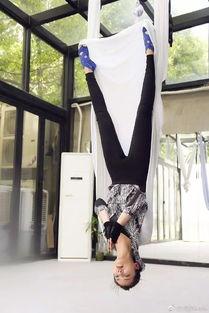 女神刘涛高难度空中瑜伽照,身姿曼妙,美的犯规