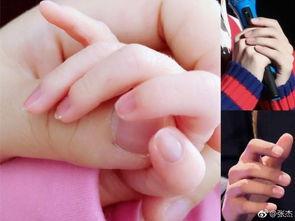 张杰晒谢娜与双胞胎女儿握手照 直呼太像了