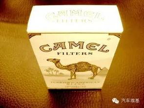 骆驼香烟(美国骆驼香烟有几个品种)
