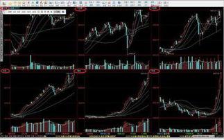 怎么看一支股票的年线?