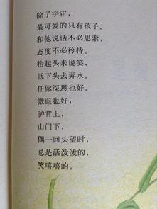 关于诗歌的看法
