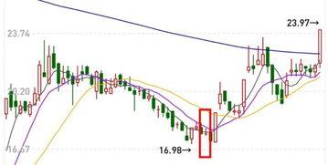 股票k线图里的数字是什么意思?