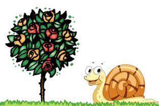 蜗牛和玫瑰树的故事在线听 嘟嘟故事