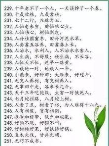 中国谚语养老的