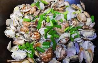 养花蛤需要放盐吗