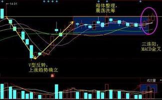 预增对股票是什么意义?