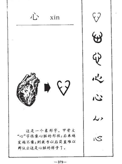 心 五行属什么(心 五行属什么)