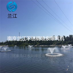 600*600图片:浮筒式喷泉曝气机优势