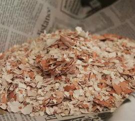鸡蛋壳炒焦养花