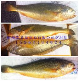 还有【蒜蓉蒸澳洲龙虾】88元/斤