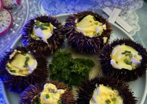 浙江游客三亚吃海胆蒸蛋,称菜里没海胆,商家免单后曾想算了