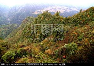 祖山原始森林大峡谷之旅