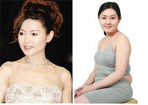 张惠妹脸圆腰粗被调侃 中国阿黛尔 女星发福物是人非