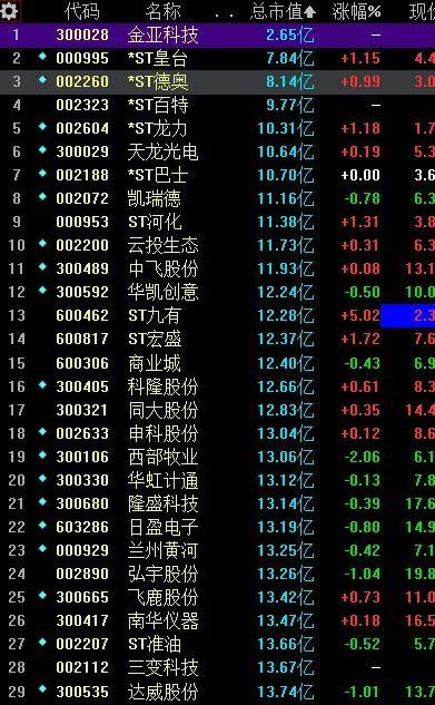 中国股市市值最少得是那些股票