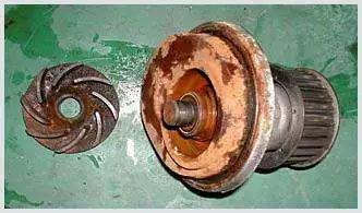 195*332图片:使用假件的危害 防冻液