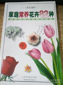 家庭常养花卉82种叫什么花