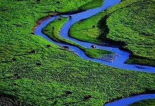 红原大草原,美如月亮的草原,像一个温婉秀丽的藏家女子