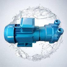 2BV液环真空泵图片