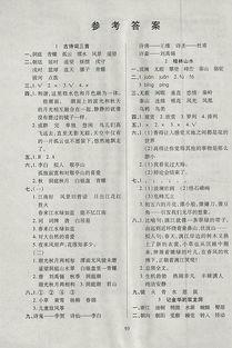 四级下册语文课堂作业本整本答案
