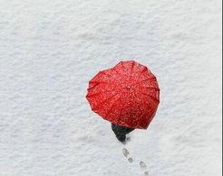 关于冬天雪的英语诗句