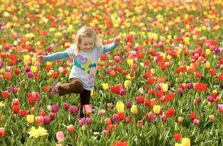关于春天的幽默说说