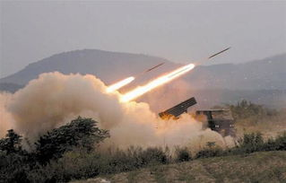火力2014演习炮兵部队多种火炮实弹射击