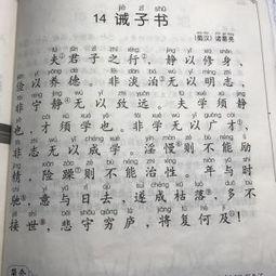 戒子书(诫子书的翻译30字)