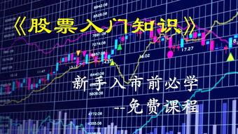 关于股票的继承