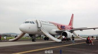 国内多个航班收到虚假威胁信息返航或备降