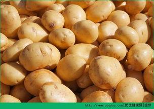 土豆的营养价值是什么 土豆的功效与作用