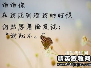 说说开心心情短语人生感悟