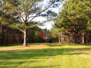 美国密西西比州亚祖城的房产USD 255,000 美国房产密西西比州亚祖城房产房价 居外网