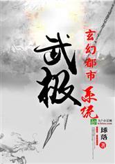 玄幻都市之武极系统小说