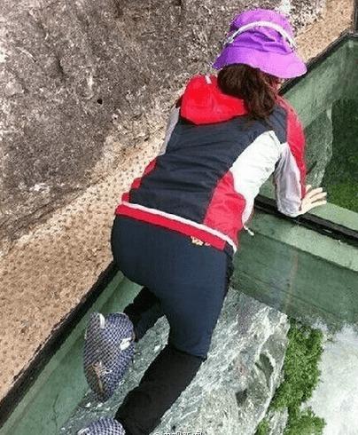 河北白石山景区建悬空1900米玻璃栈道.