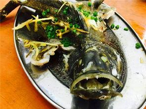 三亚海鲜哪里吃最靠谱,大美妞的三亚之旅