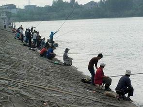 镇江市五洲山水库可以钓鱼