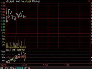 我是玩股票的有人给我介绍渤海商品交易所,不是太明白,谁能具体介绍是怎么个形式?
