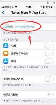 苹果怎样取消自动续费(iphone取消续费订阅)